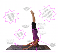 asana tip sheet archives » page 3 of 5 » blissful yogini