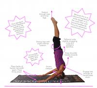 asana tip sheet 19  mukta hasta sirsasana  blissful yogini