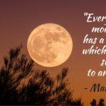 quote - Mark Twain